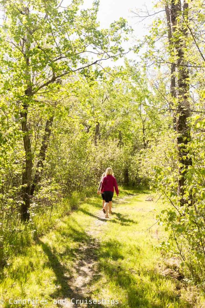 young girl walking a trail at stephenfield provincial park