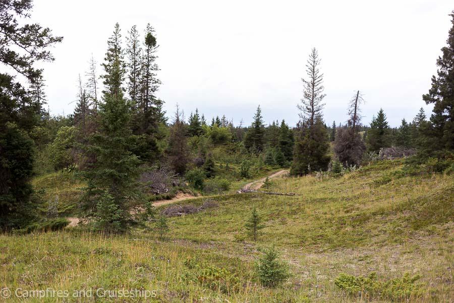 spirit sands in spruce woods provincial park