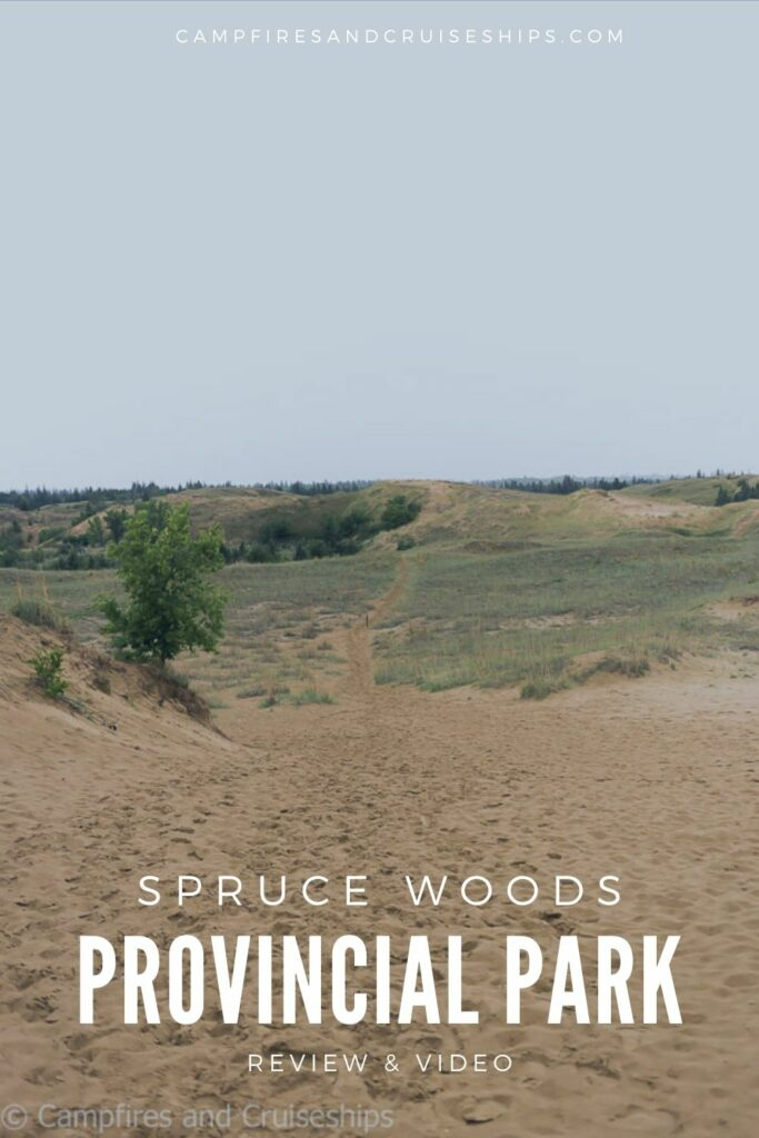 spruce woods provincial park sand dunes image with title