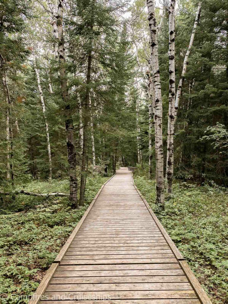brokenhead wetland interpretive trail in manitoba
