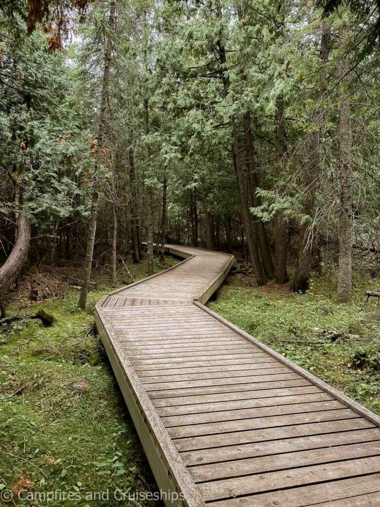 brokenhead wetland interpretive trail wooden boardwalk in manitoba