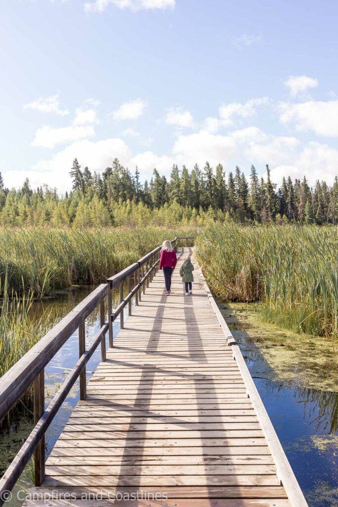 ominnick marsh trail in clear lake manitoba